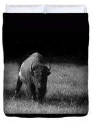 Bison Duvet Cover by Ralf Kaiser