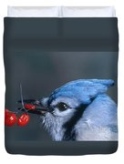 Blue Jay Duvet Cover by Photo Researchers, Inc.