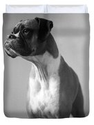 Boxer Dog Duvet Cover by Stephanie McDowell