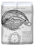 Brain And Pineal Gland Duvet Cover by Science Source