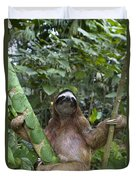 Brown Throated Three Toed Sloth Male Duvet Cover by Suzi Eszterhas