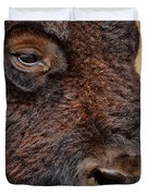 Buffalo Up Close Duvet Cover by Alan Hutchins