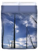 Burnt Trunks Of Black Spruce, Boggy Duvet Cover by Darwin Wiggett