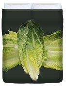 Butterfly Lettuce Duvet Cover by LeeAnn McLaneGoetz McLaneGoetzStudioLLCcom