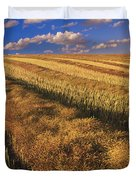 Canola Field, Tiger Hills, Manitoba Duvet Cover by Dave Reede