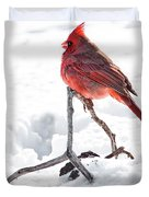 Cardinal In Snow Duvet Cover by Tamyra Ayles