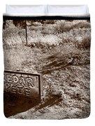 Cedar Pete Gravesite In Grafton Utah Duvet Cover by Steve Gadomski