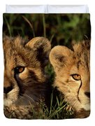 Cheetah Acinonyx Jubatus Two Cubs Duvet Cover by Peter Blackwell