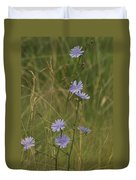 Chicory 2765 Duvet Cover by Michael Peychich