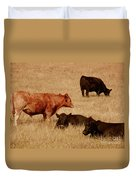 Cows Duvet Cover by Methune Hively