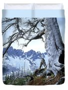 Dead Spruce In Old Forest Fire, Nabob Duvet Cover by David Nunuk