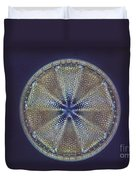 Diatom - Actinoptychus Heliopelta Duvet Cover by Eric V. Grave