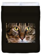 Face Framed Feline Duvet Cover by Art Dingo