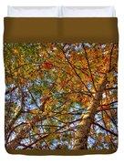 Fall Canopy Duvet Cover by Barry Jones