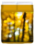 Fall Forest In Sunshine Duvet Cover by Elena Elisseeva