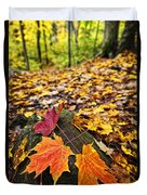 Fall Leaves In Forest Duvet Cover by Elena Elisseeva