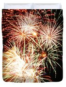 Fireworks 1569 Duvet Cover by Michael Peychich