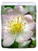 Floral Fireworks Duvet Cover by Neal  Eslinger