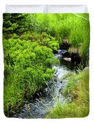 Forest Creek In Newfoundland Duvet Cover by Elena Elisseeva