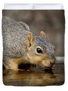 Fox Squirrel Duvet Cover by Lori Tordsen