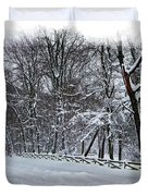 Frigid Duvet Cover by Brian Wallace