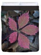 Fushia Leaf Duvet Cover by Douglas Barnett