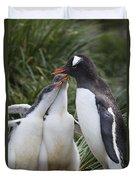 Gentoo Penguin Parent And Two Chicks Duvet Cover by Suzi Eszterhas