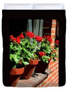 Geraniums In Germany Duvet Cover by Carol Groenen