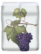 Grapes  Duvet Cover by Margaret Ann Eden