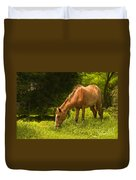 Grazing Horse Duvet Cover by Charuhas Images
