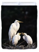 Great Egret In Nest With Young Duvet Cover by Natural Selection David Ponton