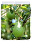 Green Pear Duvet Cover by Carol Groenen