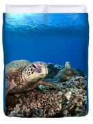Hawaiian Turtle On Pacific Reef Duvet Cover by Dave Fleetham