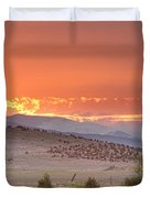 High Park Wildfire at Sunset Duvet Cover by James BO  Insogna