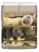 Hoffmanns Two-toed Sloth Orphaned Babies Duvet Cover by Suzi Eszterhas