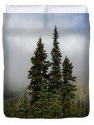 Hurricane Ridge Beauty Duvet Cover by Heidi Smith