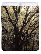 Iced Duvet Cover by Karol  Livote