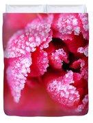 Icy rose Duvet Cover by Elena Elisseeva