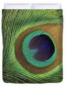 Indian Peafowl Pavo Cristatus Display Duvet Cover by Gerry Ellis