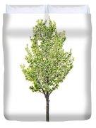 Isolated Flowering Pear Tree Duvet Cover by Elena Elisseeva