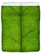 Ivy Leaf Duvet Cover by Steve Gadomski