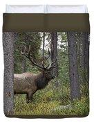 Jasper National Park, Jasper, Alberta Duvet Cover by Philippe Widling