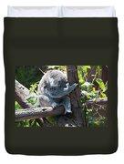 Koala Duvet Cover by Carol Ailles