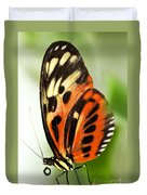 Large Tiger Butterfly Duvet Cover by Elena Elisseeva