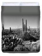 Late Winter Desert Duvet Cover by Chad Dutson