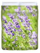 Lavender In Sunshine Duvet Cover by Elena Elisseeva