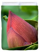 Lotus Bud--bud In A Blanket Dl049 Duvet Cover by Gerry Gantt