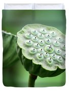 Lotus Seed Pods Duvet Cover by Sabrina L Ryan
