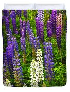 Lupins in Newfoundland meadow Duvet Cover by Elena Elisseeva