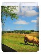 Massachusetts Farm Duvet Cover by Catherine Reusch  Daley